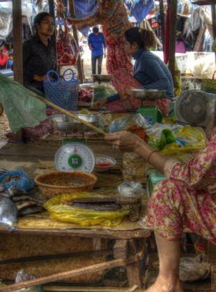 A market vendor in Ratanakiri province, shooing away the flies with plastic bag.