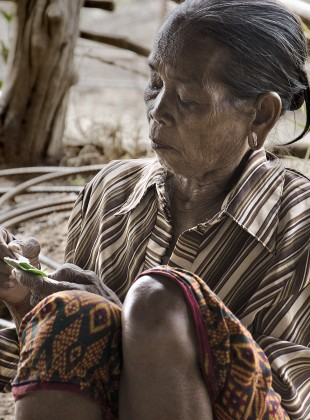 Old indigenous minority lady preparing betel nut to be chewed.
