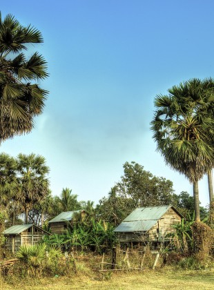 Cambodian Homestead