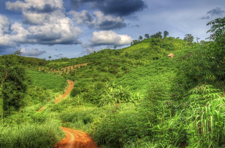 hilltribe farm in northeast Cambodia
